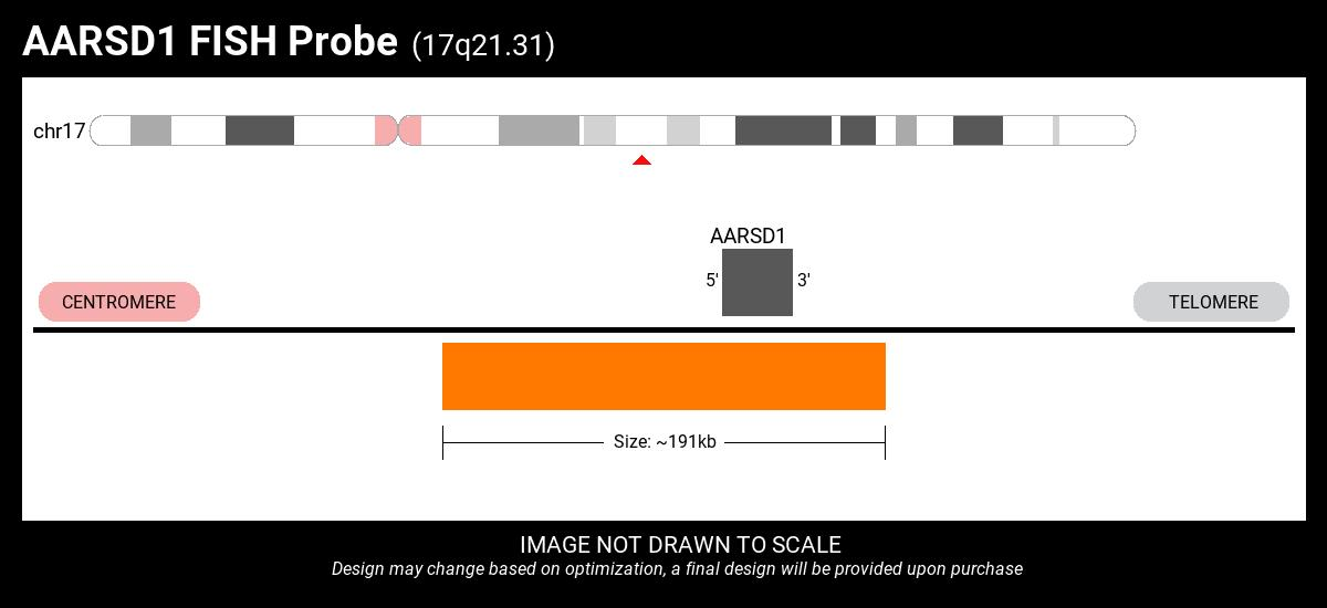 AARSD1-CCR7 Fusion FISH Probe